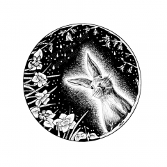 April Portal - A black and white ink drawing. Within a circle, a bunny peeks from amidst daffodils and budding forsythia branches. Raindrops fall against a dark, starry sky.