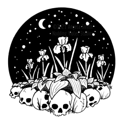 Bone Garden - a black and white ink drawing of a garden bed of irises bordered by skulls. Behind is a black sphere of starry sky with crescent moon.