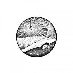 January Portal - A black and white ink drawing. A circular portal frames a winter scene. A lantern hangs from a leafless tree, casting sharp rays of enchanted light on a snow-blanketed land. Beneath the snow, in a cross-section of the earth, is seen a hibernating bunny, curled up in its den, and stones buried nearby.