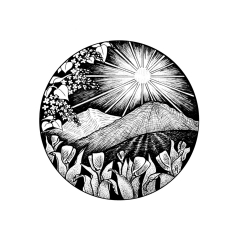 May Portal - A black and white ink drawing . Within a cirlce, tulips and lilacs frame mountains a sun rising behind receding mountains.
