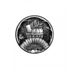 November Portal - A black and white ink drawing. Oak branches and leaves wreath a circular portal through which is seen a wood-slat bushel basket, containing butternut squash, pumpkin, and corn. In front, a sunflower and leafy apple peek from the center bottom of the portal.